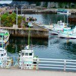伊豆/神津島での地中探査に行ってきました